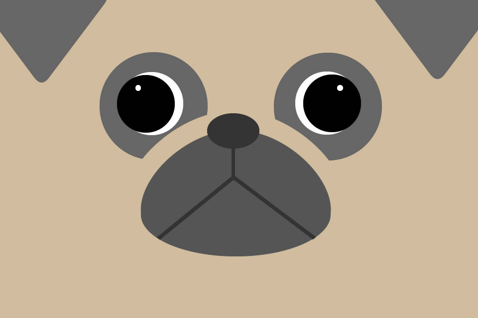 pug_illustration