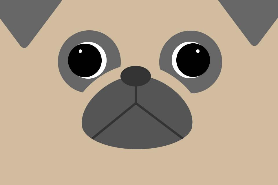 pug_illustration